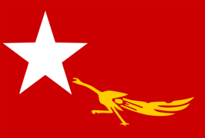 140209 800px-National_League_for_Democracy_flag_0